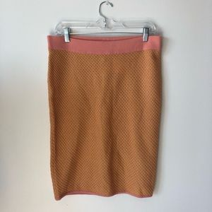 H&M Pink Yellow Wool Skirt NWT
